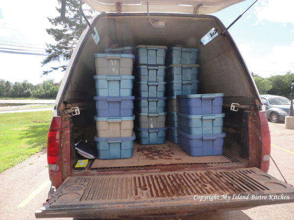 Jen's Truck Arriving at Distribution Location with Weekly CSA Boxes