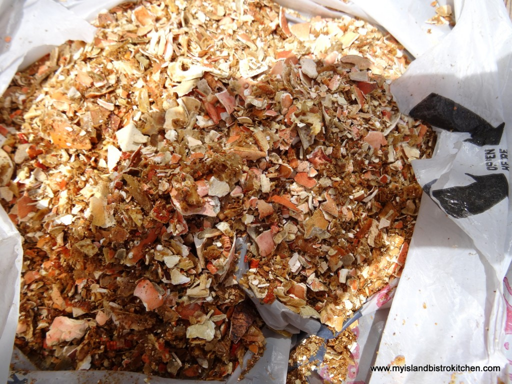 Crushed Crab Shells