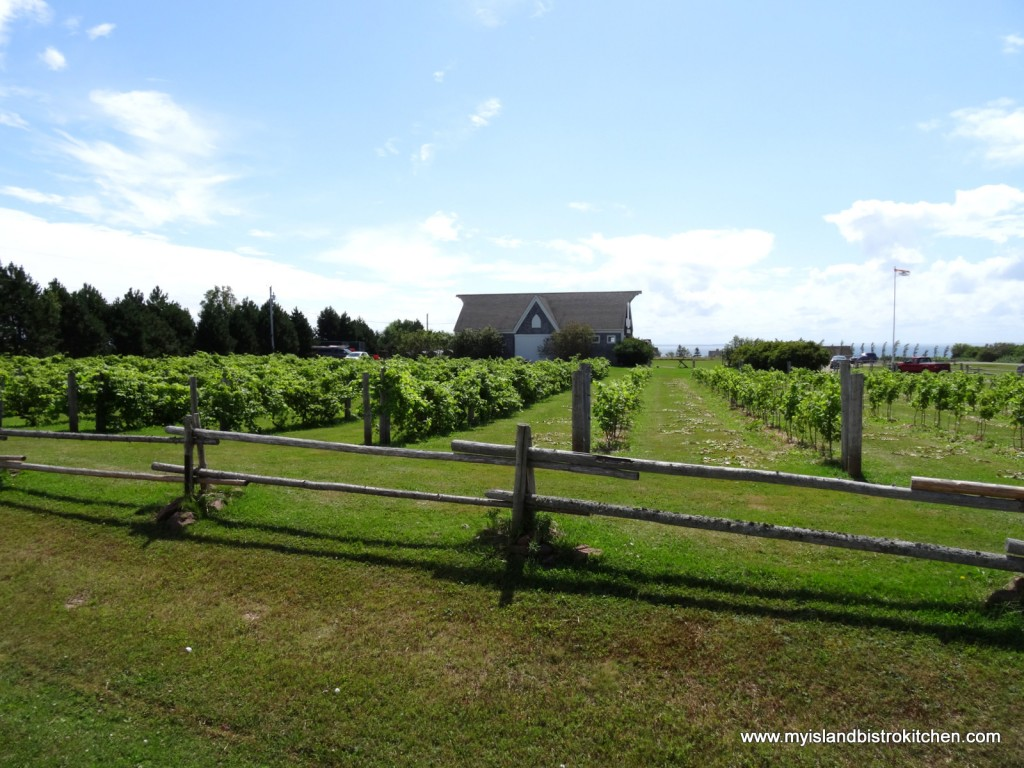 Rossignol Winery, Little Sands, PEI