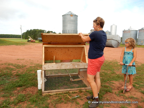 "Sally Showing one of the Portable Chicken Coops that are part of her ""Rent-A-Chicken"" Package"
