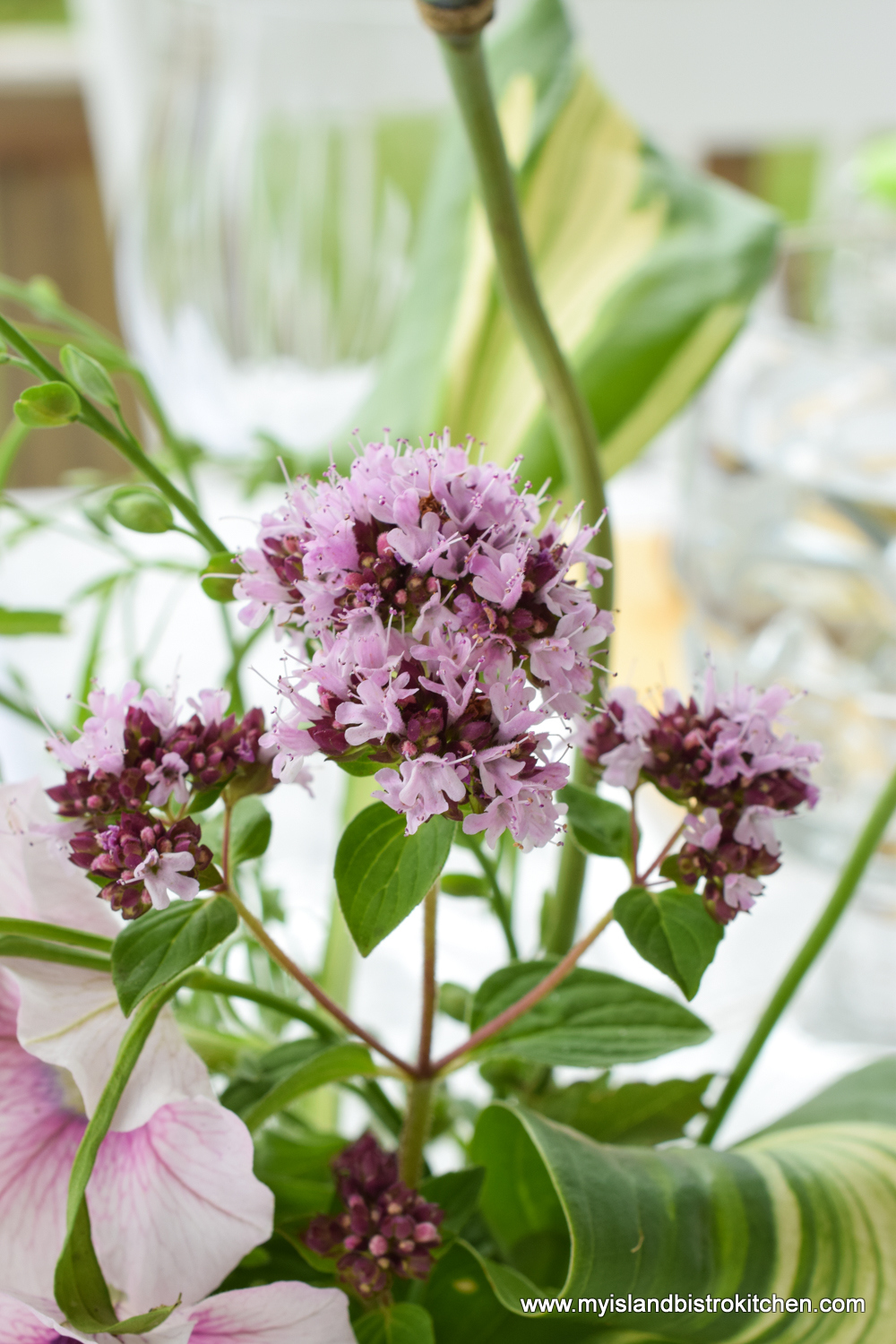 Fresh herbs, such as oregano, are great in casual floral arrangements