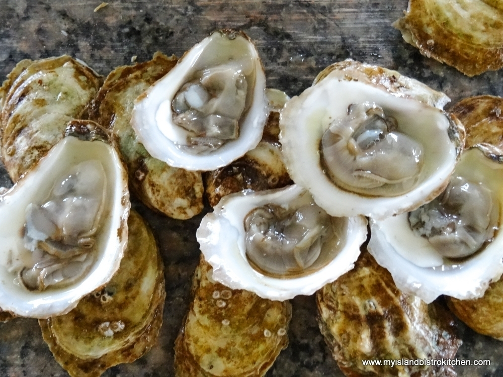 Plump PEI Oysters