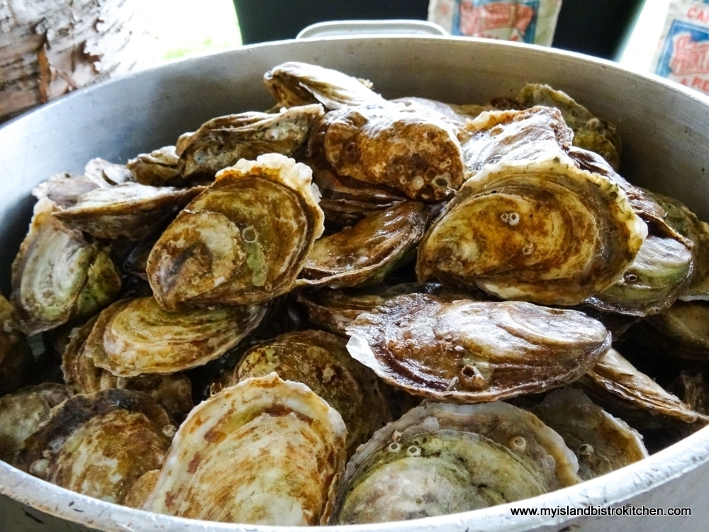 Colors and Textures of PEI Oysters
