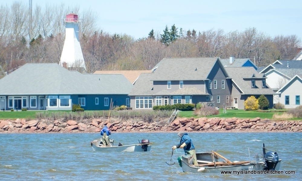Oyster Fishing in Summerside, PEI