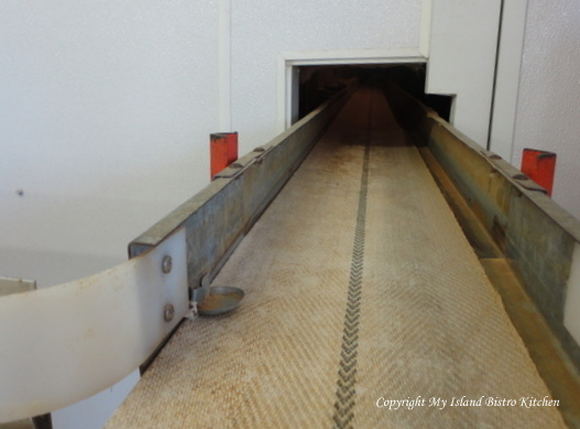 Conveyer belt connects all barns on Burns farm and transports the eggs to the grading station