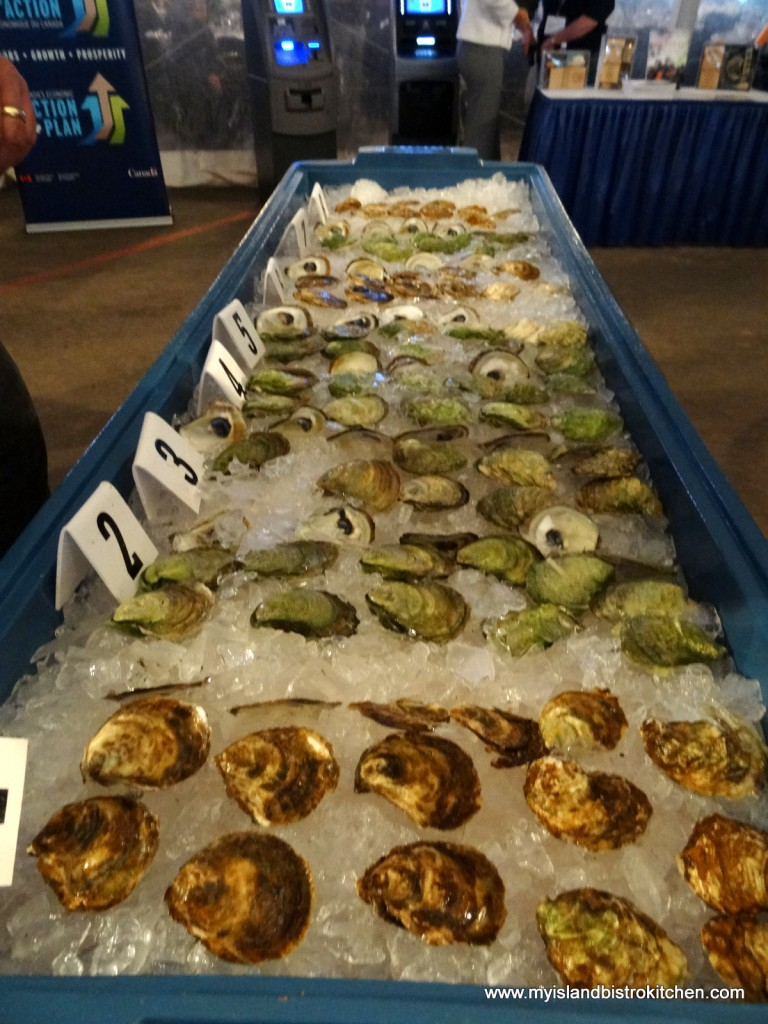 Competitors in the Oyster Grower of the Year Competition
