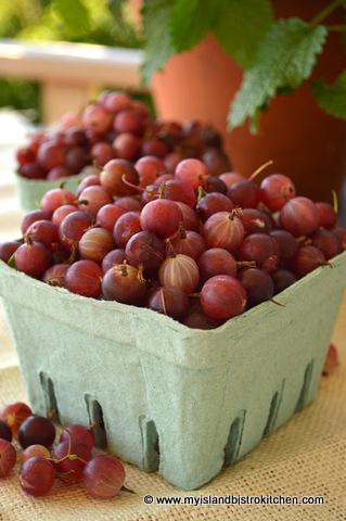 Box of freshly picked gooseberries