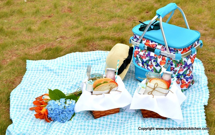 Color-themed Picnic