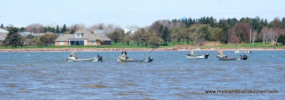Oyster Fishing in Summerside, PEI