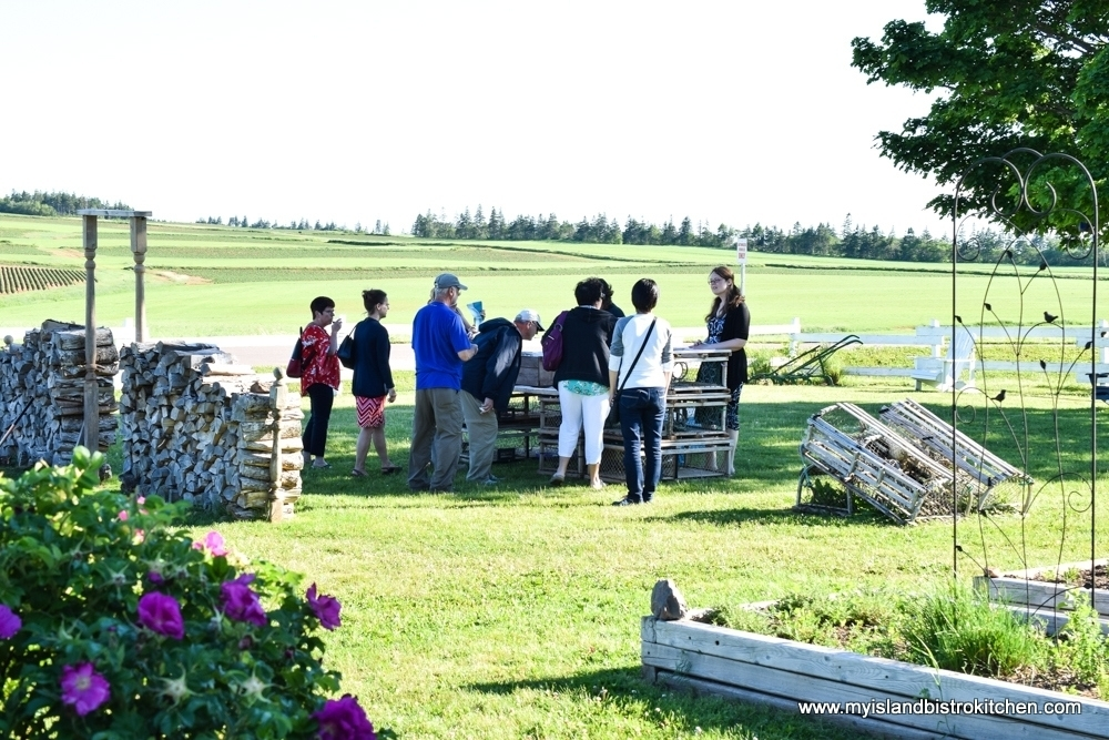 Outdoor Reception at the Surf and Turf Dinner at The Table Culinary Studio, New London, PEI