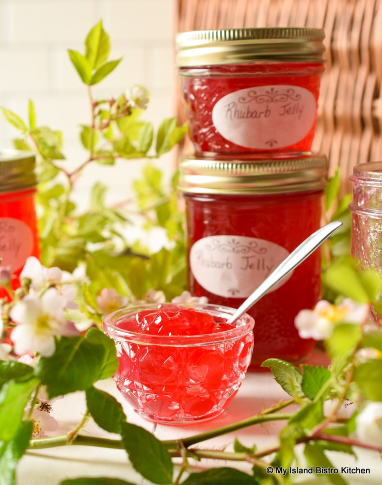 Dish and Jars of Red Jelly
